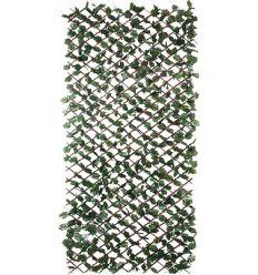 Celosia mimbre nat.c/hojas wickgreen 1x2 de nortene